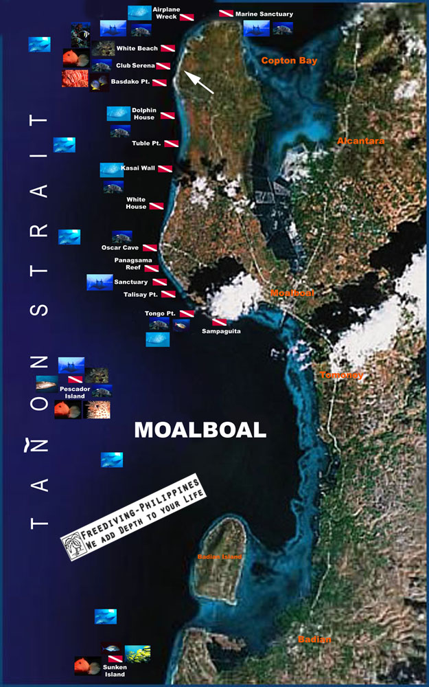 Moalboal Dive Map